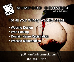 Mumford Connect Web Design professional Canadian Website Design