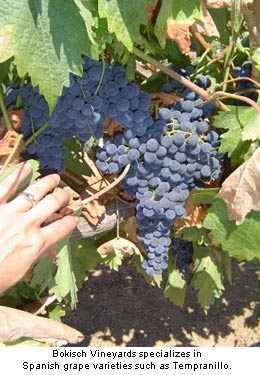 Bokisch Vineyards Tempranillo