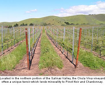 Grapes sourced from Cima Collina's Chula Vina vineyard lend a minerality to the winery's Chardonnay and Pinot Noir