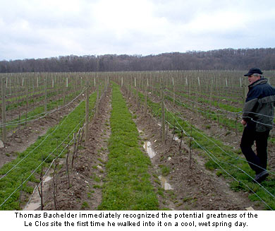 Bachelder immediately recognized the potential of the Le Clos vineyard