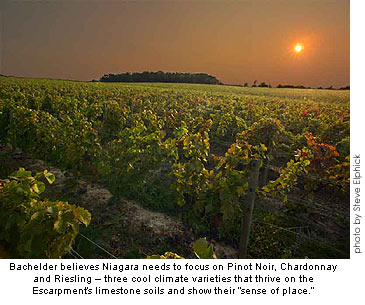 Thomas Bachelder believes Niagara should concentrate on Pinot Noir, Chardonnay and Riesling