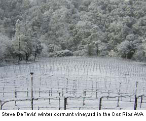 Winter in the Dos Rios Appellation