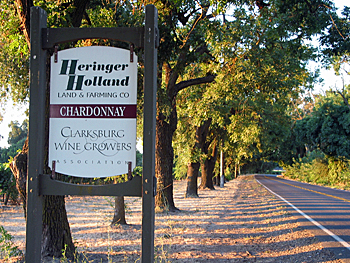 Heringer-signage