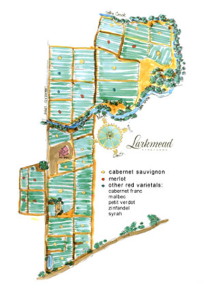 Larkmead-map