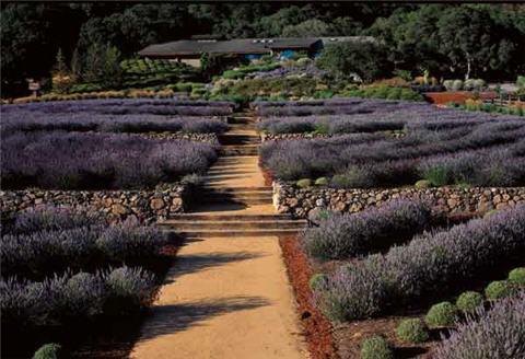 Matanzas gardens.jpg