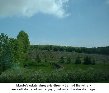Lawrence Mawby's estate vineyards