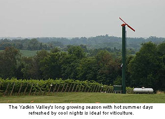 The climate of the Yadkin Valley is ideal for viticulture