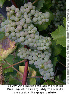 Savvy wine merchants are marketing Riesling, which is arguably the greatest of the white grape varieties.