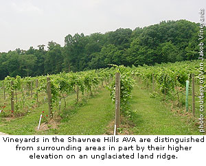 Von Jakob Vineyards in Illinois' Shawnee Hills AVA
