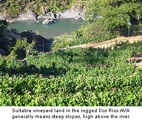 Dos Rios' steep sloped vineyards