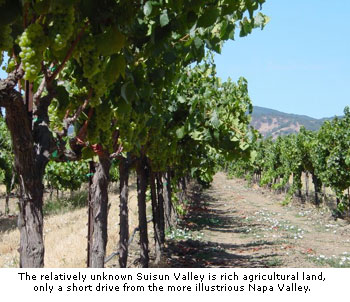 Suisun has rich agricultural land and is just south of Napa