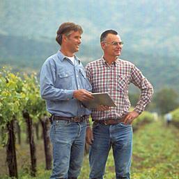 Tony & Steve Baldini