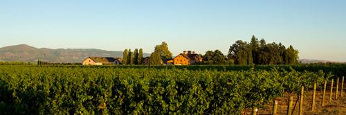 Trefethen-Panorama-500.jpg