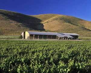 Byron Vineyard and Winery in the Santa Maria Valley.