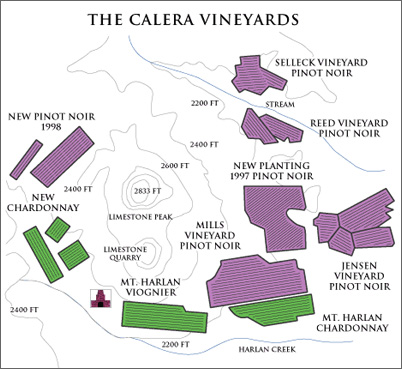 calera mount harlan vineyards