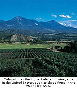 Colorado's high elevation vineyards