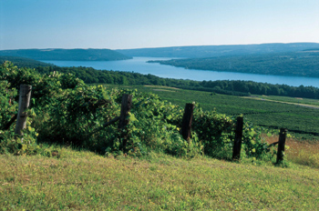 keuka lake view