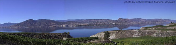 Naramata Bench Vineyards