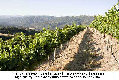 Diamond T Ranch vineyard