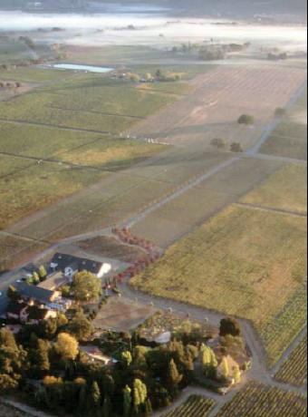 Aerial view Trefethen Vineyards