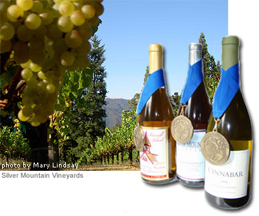 Appellation America's <i>Best-of-Appellation</i>™ Evaluation Program identifies the Chardonnays that best typify the Santa Cruz Mountains AVA, and the taste profiles of the region's varied sub-areas.
