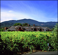 Cakebread Cellars Winery