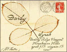 Darby Winery-Syrah