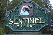 Sentinel Winery
