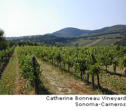 Catherine Bonneau Vineyard, Sonoma Carneros