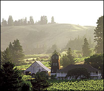 Handley Cellars - Anderson Valley