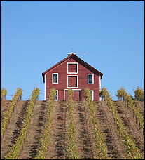 Peterson Winery - Dry Creek Valley, California